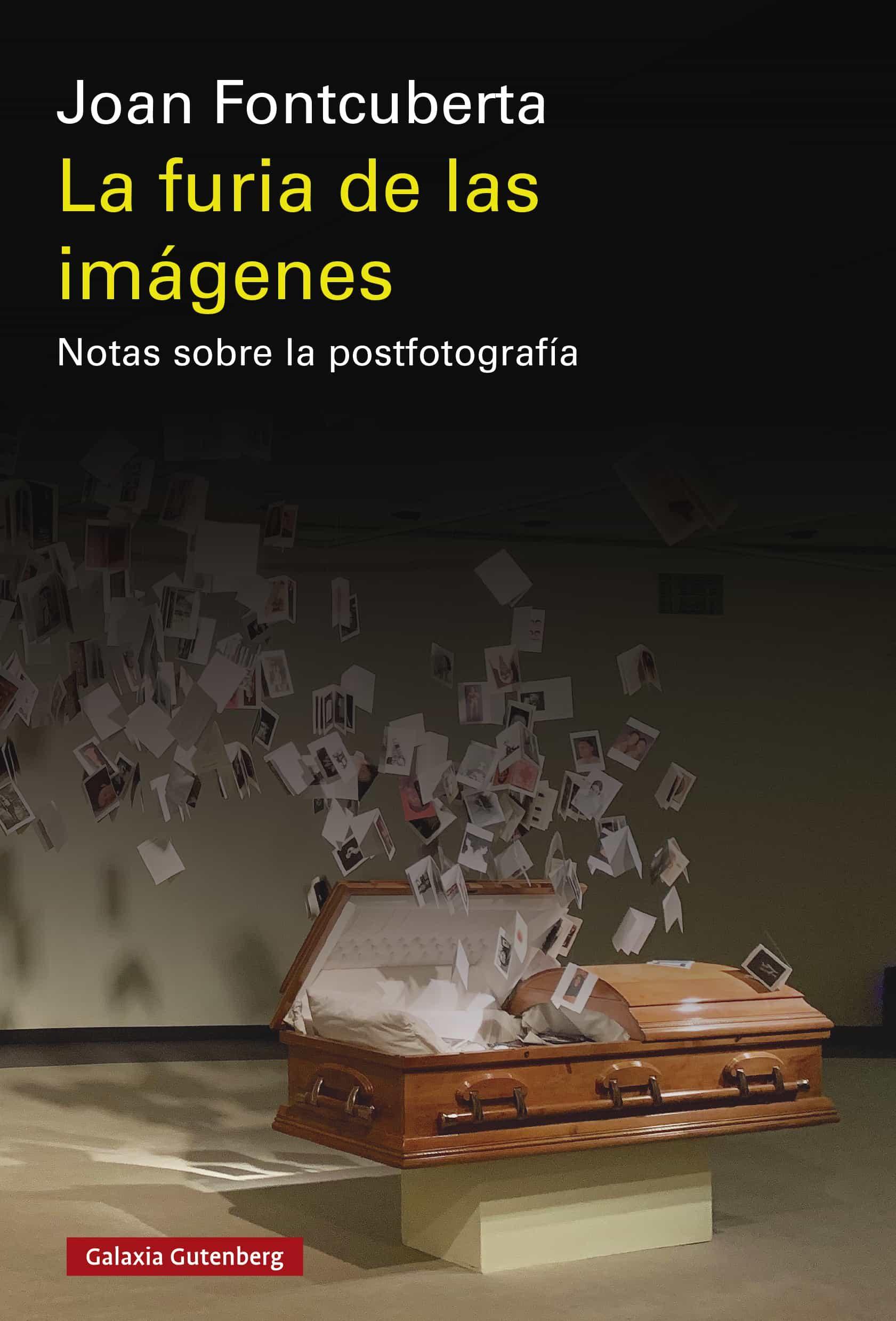 La Furia De Las Imágenes   por Joan Fontcuberta epub