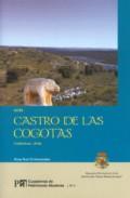 Guia Castro De Las Cogotas: Cardeñosa, Avila (cuadernos De Patrim Onio Abulense Nº 4) por Rosa Ruiz Entrecanales epub