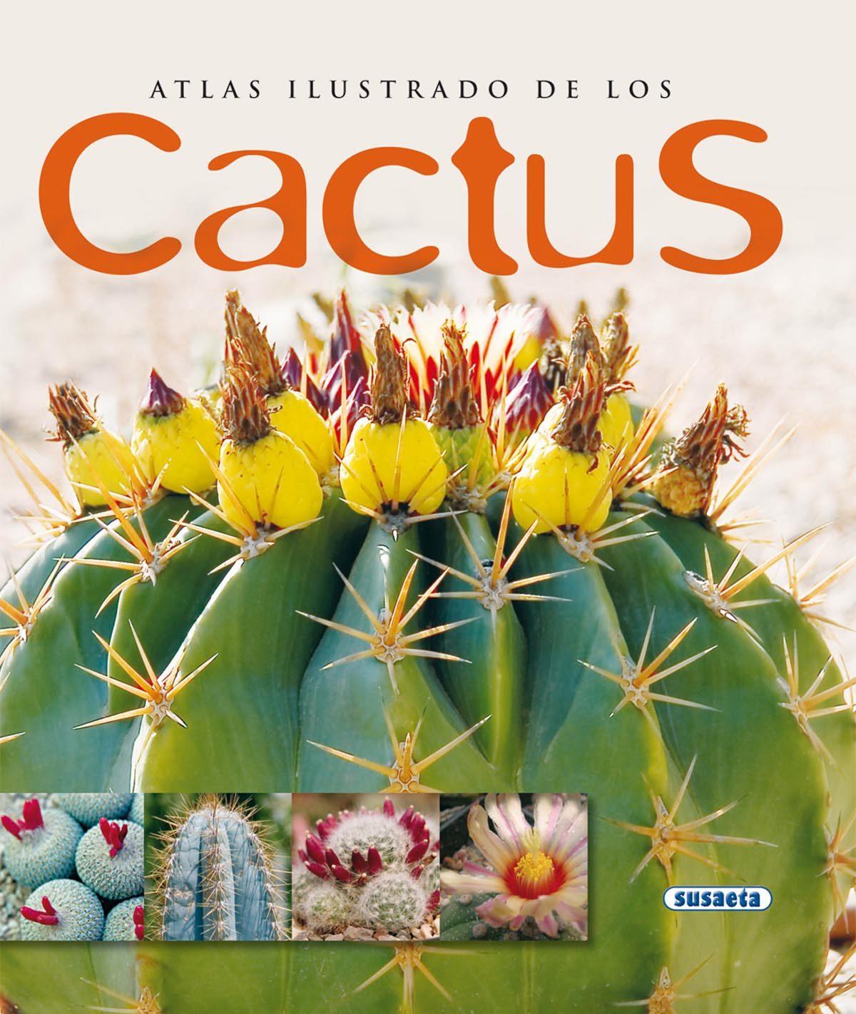 Cactus por Vv.aa. epub
