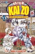 Katteni Kaizo Nº 13 por Kohji Kumeta