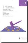 El Derecho Penal De La Union Europea: Situacion Actual Y Perspect Ivas De Futuro por Luis Arroyo Zapatero epub