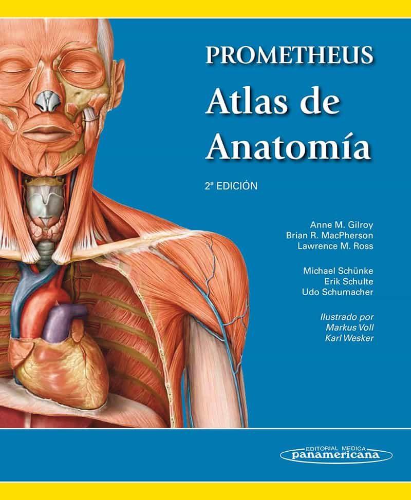 PROMETHEUS. ATLAS DE ANATOMIA (2ª ED) | ANNE M. GILROY | Comprar ...