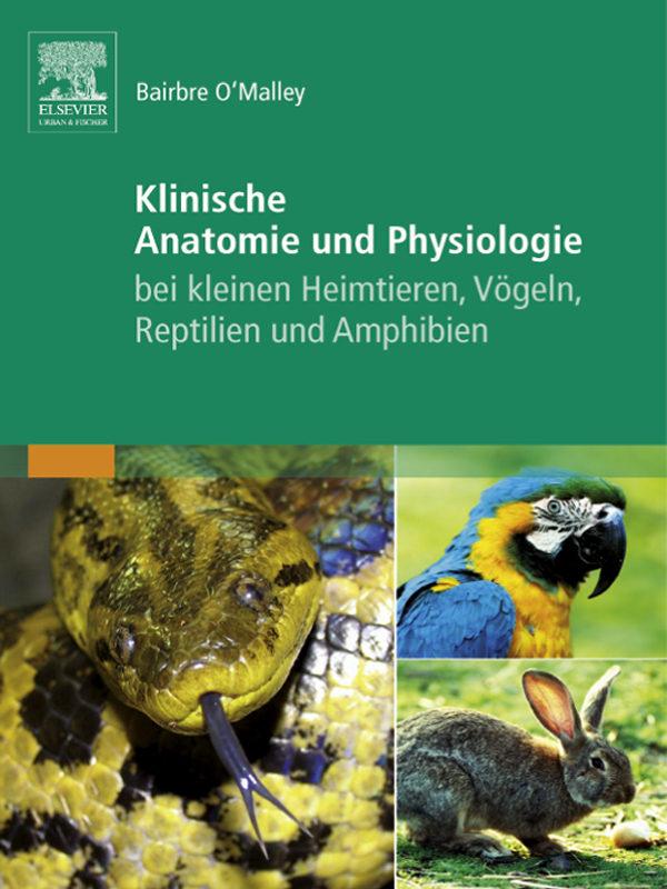 Atemberaubend Klinische Anatomie Und Physiologie Für Veterinär ...