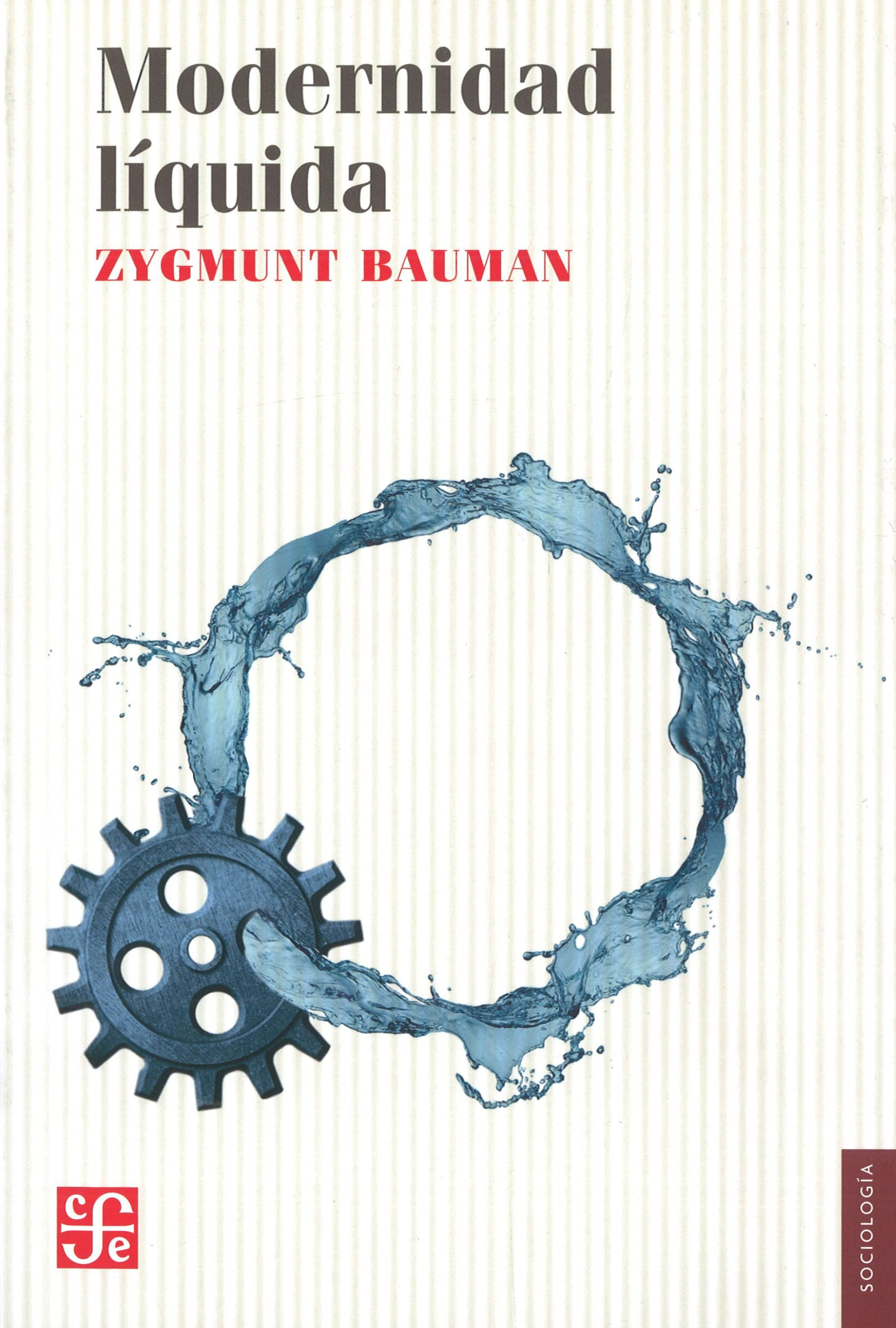 modernidad liquida pdf libro completo