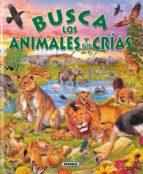 busca los animales y sus crias-9788430546800