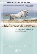 la liberacion del alma: el viaje mas alla de ti-michael a. singer-9788484455110