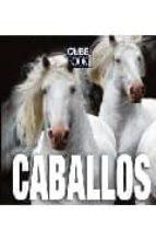 caballos (cube book)-9788496865310