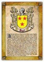 apellido ángel / origen, historia y heráldica de los linajes y apellidos españoles e hispanoamericanos (ebook)-antonio tapia-cdlhf00010630