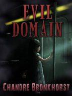 evil domain (ebook) chandre bronkhorst 9783957031440