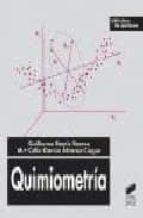 quimiometria-guillermo ramis ramos-mª celia garcia alvarez-coque-9788477389040