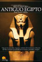breve historia del antiguo egipto (ebook) juan jesus vallejo 9788497632140