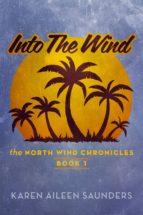 into the wind (ebook)-karen aileen saunders-9781623090050