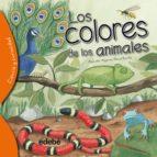 los colores de los animales alejandro algarra 9788468329550