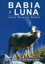 babia y luna julio alvarez rubio 9788494347450