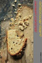 david copperfield (ebook) 9788827521960