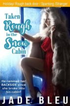 taken rough in the snow cabin (ebook) 9788827536360