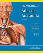 prometheus. atlas de anatomia (2ª ed)-anne m. gilroy-brian r. macpherson-lawrence m. ross-9788498357080
