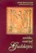 heraldica municipal de guadalajara antonio ortiz garcia antonio herrera casado 9788495179531