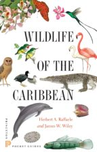 wildlife of the caribbean (ebook)-herbert a. raffaele-james wiley-9781400851690