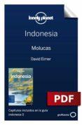 Descargar ebooks gratis en pdf INDONESIA 5_5. MOLUCAS de VARIOS (Spanish Edition) iBook ePub