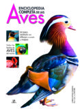 ENCICLOPEDIA COMPLETA DE LAS AVES - 9788466223010 - CHRISTOPHER PERRINS