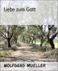 Ebook para pc descargar gratis LIEBE ZUM GOTT in Spanish de WOLFGANG MUELLER