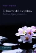 EL BROTAR DEL ASOMBRO - 9788427133730 - RAFAEL REDONDO