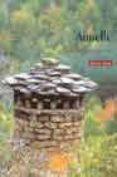 AINIELLE: LA MEMORIA AMARILLA - 9788483211540 - ENRIQUE SAUTE