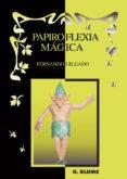 PAPIROFLEXIA MAGICA - 9788489840560 - FERNANDO GILGADO GOMEZ