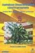 CAPITALISMO FINANCIERO GLOBAL Y GUERRA PERMANENTE: EL DOLAR, WALL STREET Y LA GUERRA CONTRA IRAK - 9788496044180 - RAMON FERNANDEZ DURAN