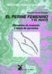 anatomia para el movimiento: el perine femenino y el parto: eleme ntos de anatomia y bases de ejercicios-9788487403330