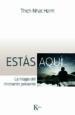 ESTAS AQUI: LA MAGIA DEL MOMENTO PRESENTE THICH NHAT HANH