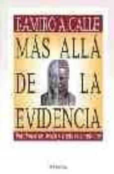 Costosdelaimpunidad.mx Mas Alla De La Evidencia Image