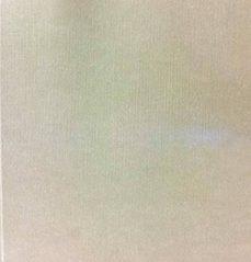 Permacultivo.es Jorge Castillo. Seis Constantes De Su Pintura Image