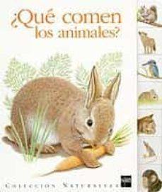 Inmaswan.es ¿Que Comen Los Animales? Image