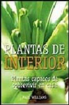 Eldeportedealbacete.es Plantas De Interior: Plantas Capaces De Sobrevivir En Casa Image