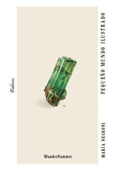 Descargar google books como pdf completo PEQUEÑO MUNDO ILUSTRADO CHM FB2 (Literatura española)