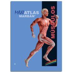 Descargador de libros epub MUSCULOS (MAXI ATLAS 3)