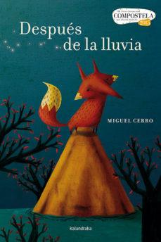 despues de la lluvia (premio compostela 2015)-miguel cerro-9788484649670