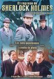 los seis napoleones / estrella de plata (s. holmes) (dvd)-8436022285538