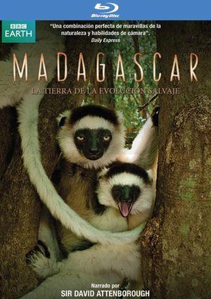 madagascar (blu-ray)-8436027579991